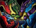 Dragonspokerfin thomas patrick reidy