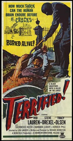 Terrified poster