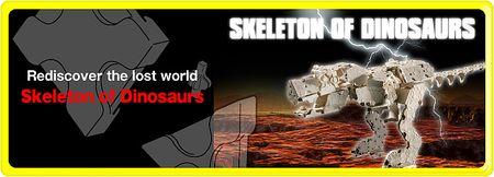 G_skeleton_of_dinosaurs