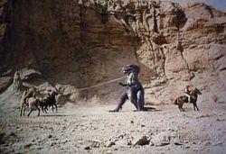 Valley-of-Gwanji cowboys