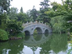 Croc west lake hangzhou a