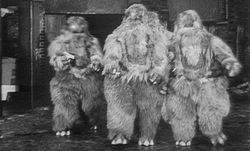 Doctor-who 41-web-of-fear-yeti