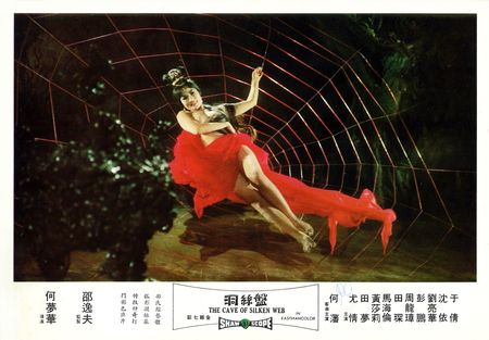 The Cave of Silken Web