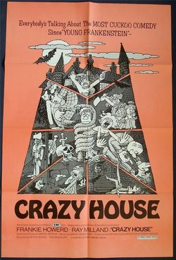 The-house-in-nightmare-park-crazy house