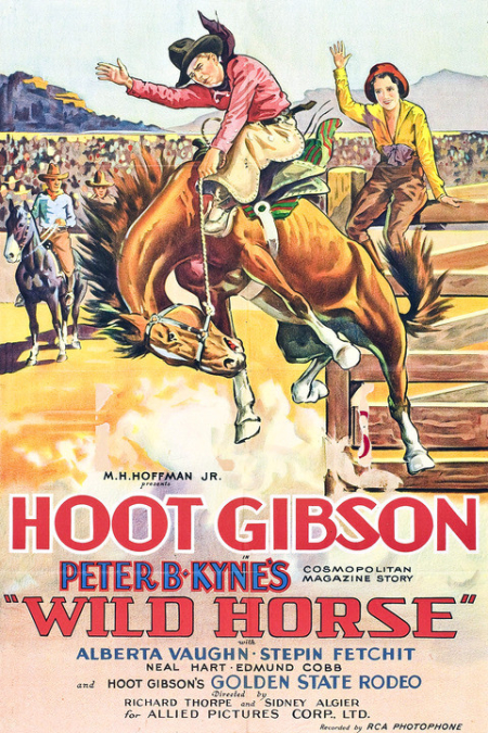 Wild Horse 1931