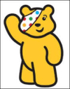 Pudsy