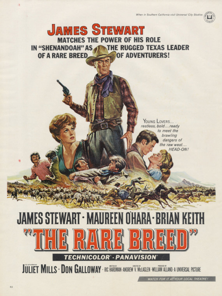 The rare breed 1966