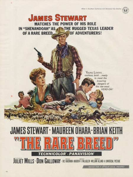 The rare breed 1966