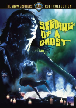 Seeding of a ghost 1989 Image DVD