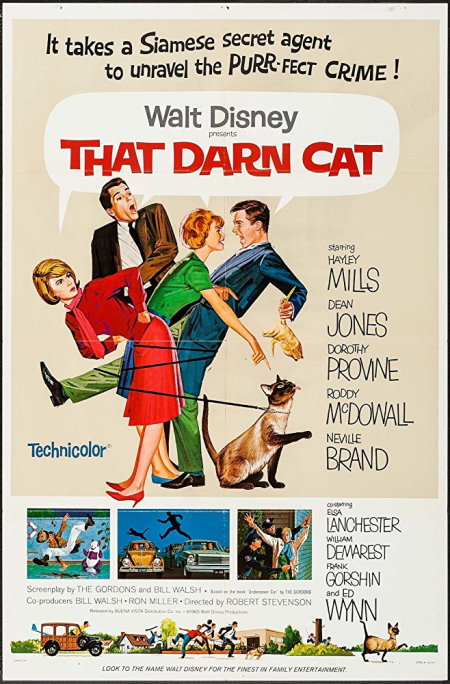 That darn cat 1965 a