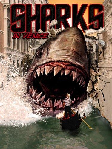 Sharks In Venice 2008