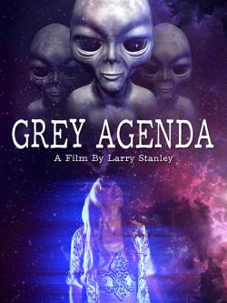 Grey Agenda 2017