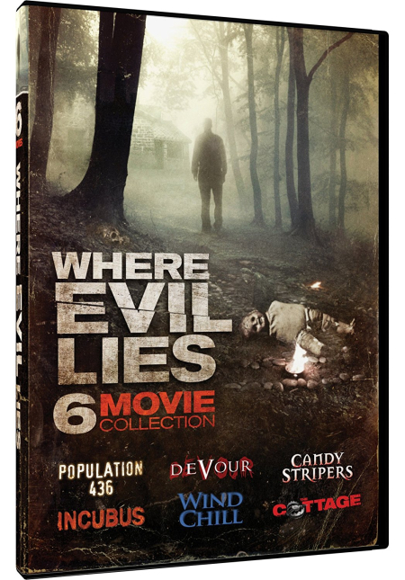 Where evil lies 6 movie collection