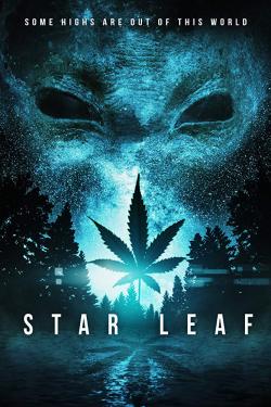 Star Leaf 2015