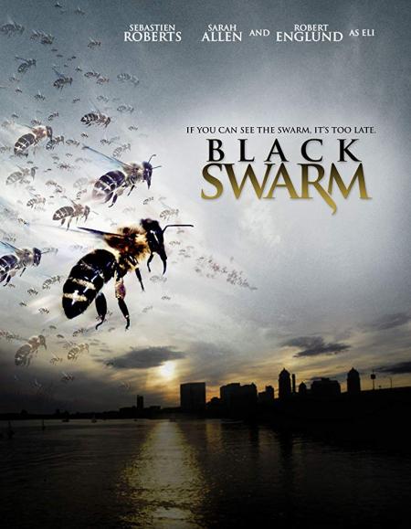 Black Swarm 2007
