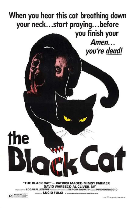 The Black Cat 1981 b