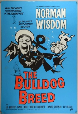 The bulldog breed 1960