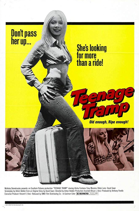 Teenage tramp 1973