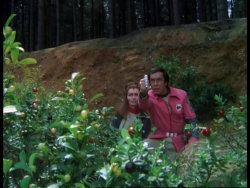 Space 1999 disc 8 (2)