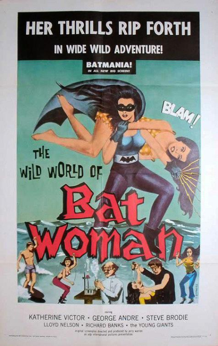 The Wild World Of Batwoman 1966